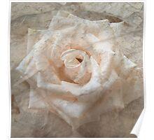 Old Rose Poster