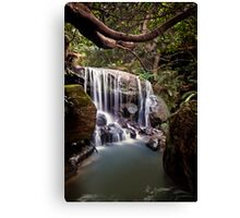 ~ chasing waterfalls ~ Canvas Print