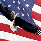 BALD EAGLE & AMERICAN FLAG by TomBaumker