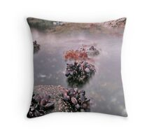 Mussle bed and Moving water, Mull, Scotland Throw Pillow