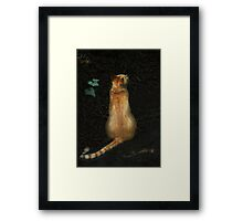 little tiger, waiting Framed Print