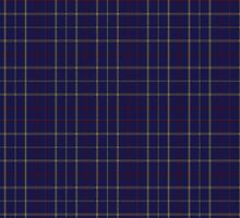 00470 Tattersall Blue Fashion Tartan  by Detnecs2013