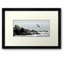 Puffin Over Heavy Seas, Wales Framed Print