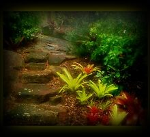 John's Garden by myraj