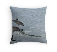 Common Dolphin, Treshnish, Scotland Throw Pillow