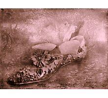 """Anyone Seen Cinderella ?..."" Photographic Print"