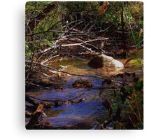 Painted Water Scene ! Canvas Print