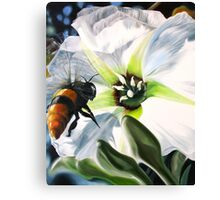 """Bee-ing There"" - large Mexican bee on a white blossom Canvas Print"