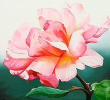 """""""Leaping Salmon""""- English rose by James  Knowles"""