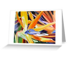 """""""Birds in Paradise"""" - birds of paradise flowers Greeting Card"""