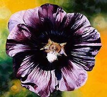 """""""Purple Hollyhock""""- large almost black hollyhock  by James  Knowles"""