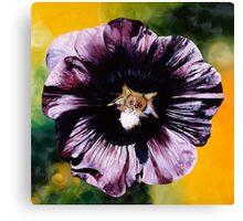 """Purple Hollyhock""- large almost black hollyhock  Canvas Print"