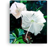 """Hibiscus Blancas"" - white hibiscus blossoms Canvas Print"