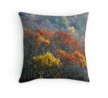 Red Oaks, Autumn, South Wales Throw Pillow