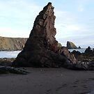 Ballydowane Cove,Copper Coast,Co.Waterford,I.#4 by Pat Duggan