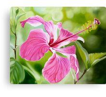 """""""Hibiscus"""" translucent pink hibiscus flower Canvas Print"""