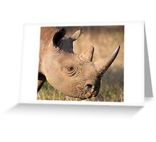 Black Rhino Profile Greeting Card