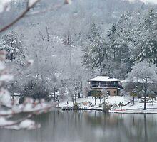 Winter Wonderland by Gordon Taylor