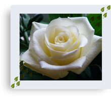 Flower with frame challenge Canvas Print