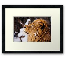 What is that white stuff coming from the sky?!! Framed Print