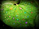 Colorful Rain by Susan S. Kline
