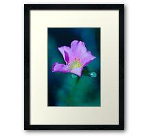 Colour of Life XL Framed Print