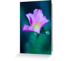 Colour of Life XL Greeting Card