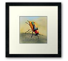 Acrobat Beetle Framed Print