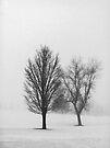 Quiet by KBritt