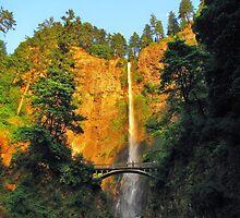 Multnomah Falls, Late Afternoon..Oregon by trueblvr