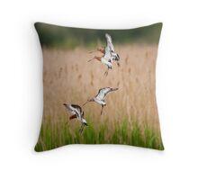 Black-tailed Godwits Throw Pillow