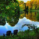 Summer Breeze by Lois  Bryan