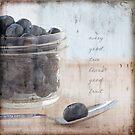 Blueberries & Spoon by JulieLegg