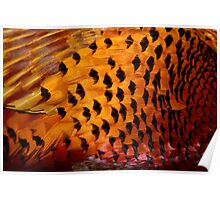 Abstract Pheasant 2 Poster