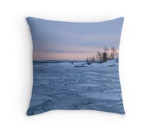 All this ice ... Throw Pillow