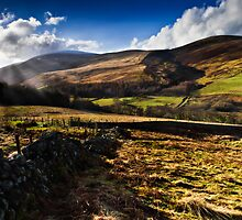 The Cheviot, Northumberland National Park. UK by David Lewins