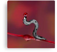 Juggling Caterpillar Canvas Print