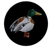 Quack. Photographic Print