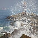 Spray On The Rocks by Deborah  Benoit