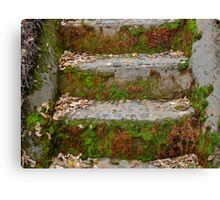 Old Stairs Canvas Print