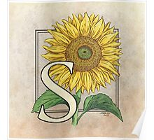 S is for Sunflower Poster