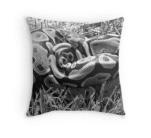 B&W ball python Throw Pillow