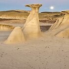 Bisti Badlands Panorama by Mitchell Tillison