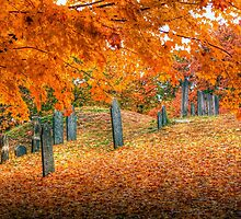 To Everything....There is a Season by Monica M. Scanlan