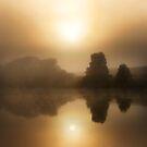 Sunrise at Wingham Brush by Steve  Woodman