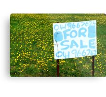For Sale Metal Print