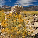Mono County by Anne McKinnell