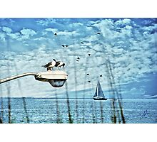 By the Seaside Photographic Print