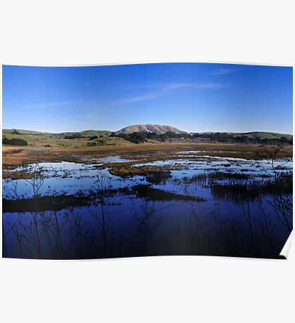 Tomales Bay Ecological Reserve  •  Inverness, California Poster