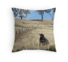 Canine Bovine? Throw Pillow
